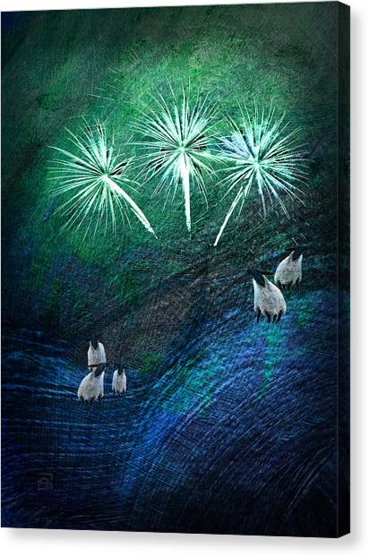The Fireworks Are Starting Canvas Print