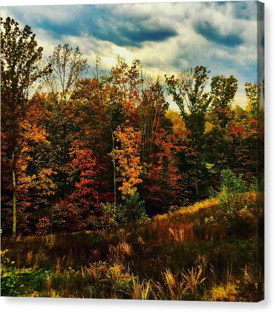 The First Days Of Fall Canvas Print