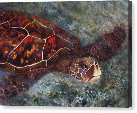 The First Honu Canvas Print