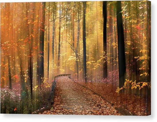 Canvas Print featuring the photograph The Flickering Forest by Jessica Jenney