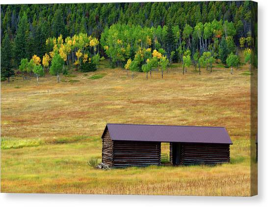 The Forgotten Barn Canvas Print
