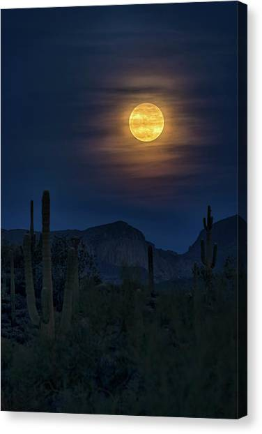 Wolf Moon Canvas Print - The Full Wolf Moon  by Saija Lehtonen