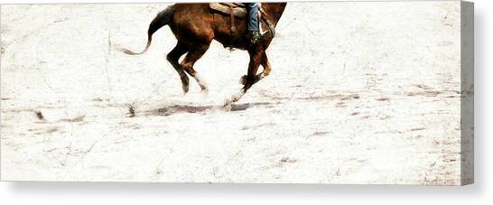 The Galloping  Canvas Print by Steven Digman