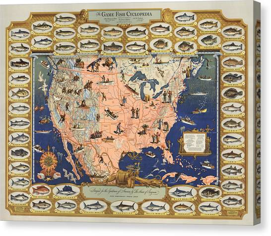 Angling Art Canvas Print - The Game Fish Cyclopedia -  Game Fish - Angling Chart Of The Usa - Illustrated Game Fishing Chart by Studio Grafiikka