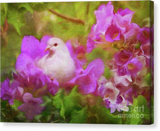 The Garden Of White Dove Canvas Print
