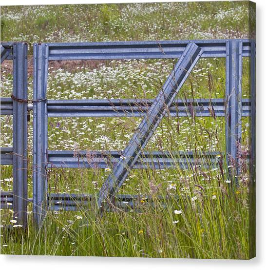 The Gate Canvas Print by Rebecca Cozart