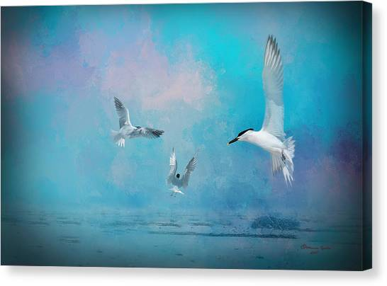 Florida Wildlife Canvas Print - The Gathering by Marvin Spates