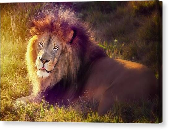 The Glorious King  Canvas Print