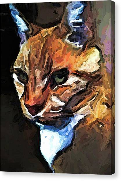 The Gold Cat With The Stage Presence Canvas Print