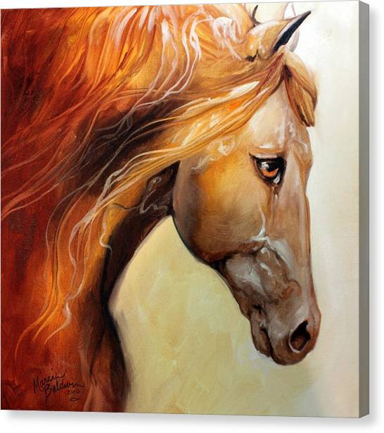 The Golden Canvas Print by Marcia Baldwin