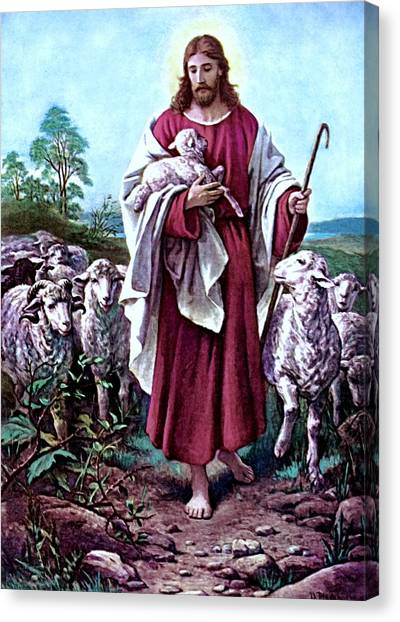 The Good Shepherd 1878 Bernhard Plockhorst Canvas Print