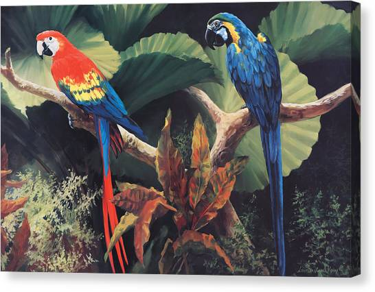 Macaws Canvas Print - The Gossipers by Laurie Hein
