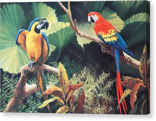 Macaws Canvas Print - The Gossips by Laurie Hein