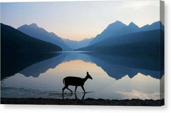 Glaciers Canvas Print - The Grace Of Wild Things by Dustin  LeFevre
