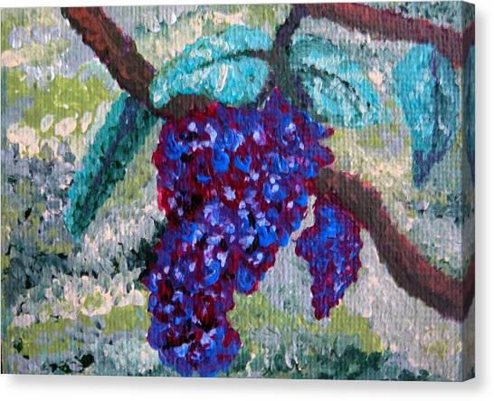 The Grapevine Canvas Print by Deborah Rosier