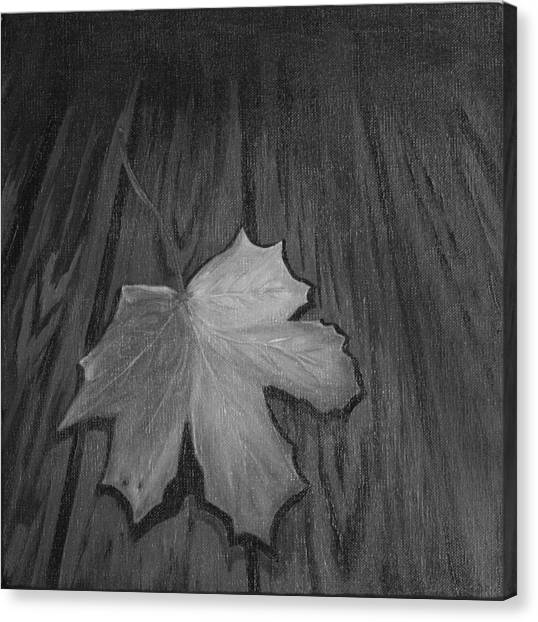 The Gray Leaf Canvas Print by Ninna