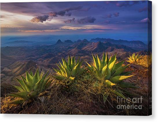 North Rim Canvas Print - Great Wide Open Texas by Inge Johnsson