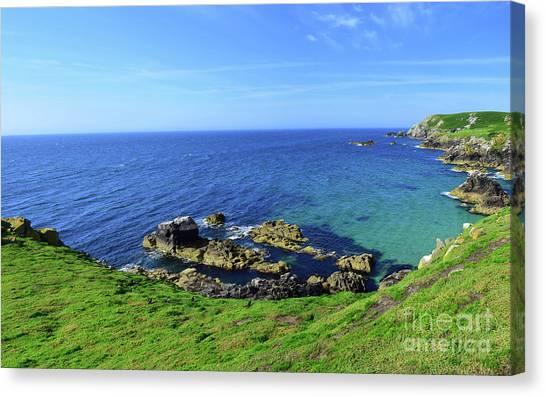 Razorbills Canvas Print - The Greater Saltee Island by Joe Cashin