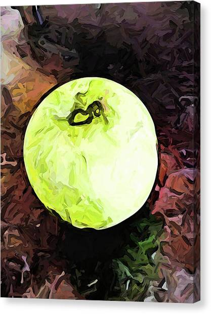 The Green Apple In The Bright Light Canvas Print