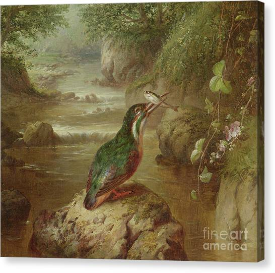 Kingfisher Canvas Print - The Haunt Of The Kingfisher by John Wainwright