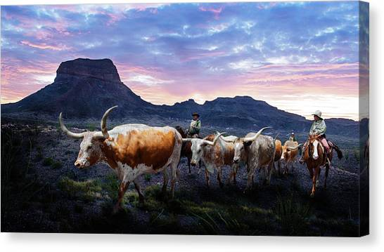 Texas Longhorns Blue Canvas Print