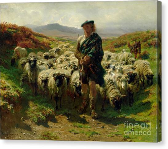Country Canvas Print - The Highland Shepherd by Rosa Bonheur