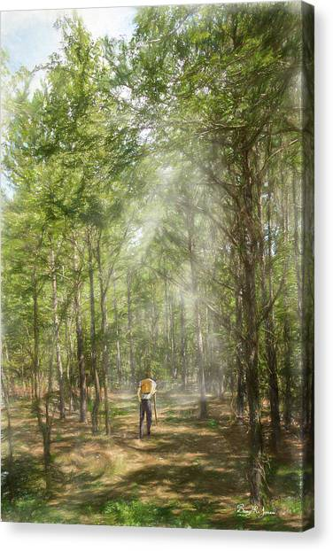 The Hiker Canvas Print by Barry Jones