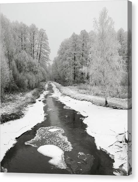 The Hoarfrost. Kuchynivka, 2014. Canvas Print