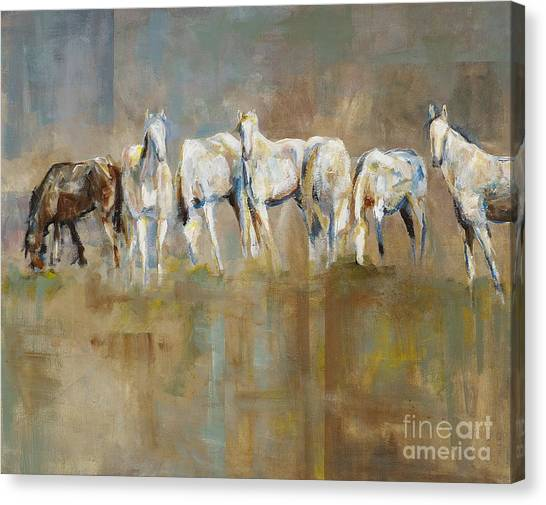 White Horse Canvas Print - The Horizon Line by Frances Marino