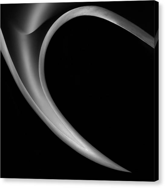 Metal Canvas Print - The Horn by Gilbert Claes