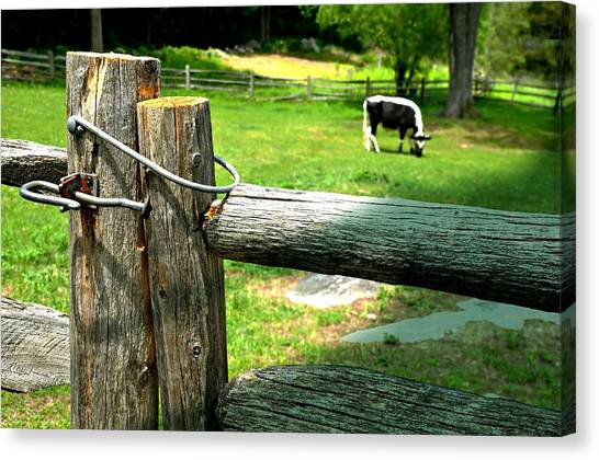 The Nature Center Canvas Print - The Iron Latch by Diana Angstadt