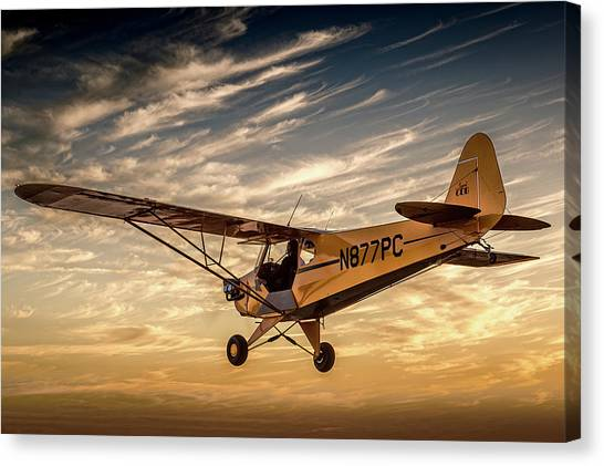 The Joy Of Flight Canvas Print