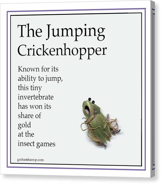 The Jumping Crickenhopper Canvas Print