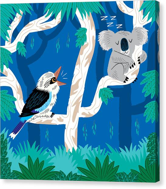Koala Canvas Print - The Koala And The Kookaburra by Oliver Lake