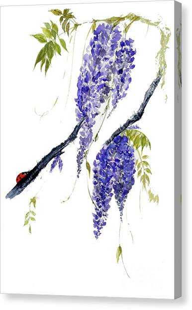 The Ladybird And The Wisteria Canvas Print
