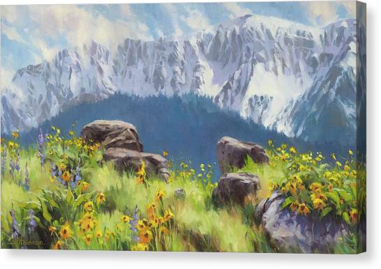 Bucolic Canvas Print - The Land Of Chief Joseph by Steve Henderson