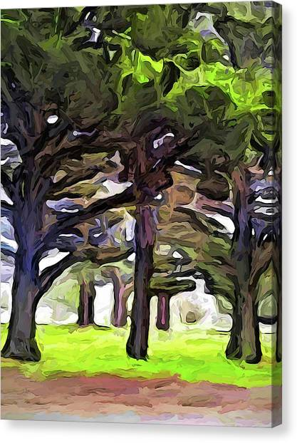 The Landscape With The Leaning Trees Canvas Print