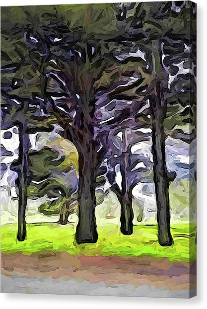 The Landscape With The Trees In A Row Canvas Print