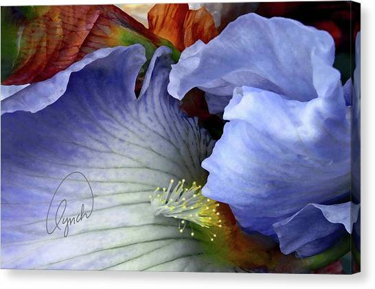 The Last Iris Canvas Print