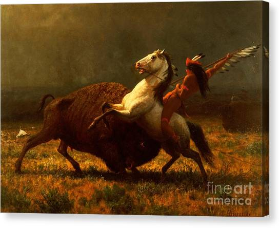 White Horse Canvas Print - The Last Of The Buffalo by Albert Bierstadt