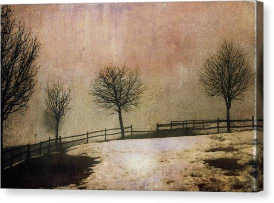 The Last Snow Canvas Print