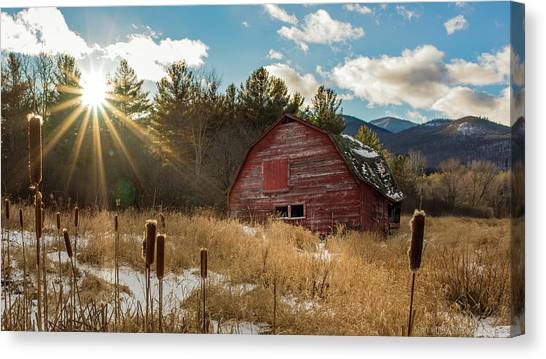 The Last Winter Canvas Print