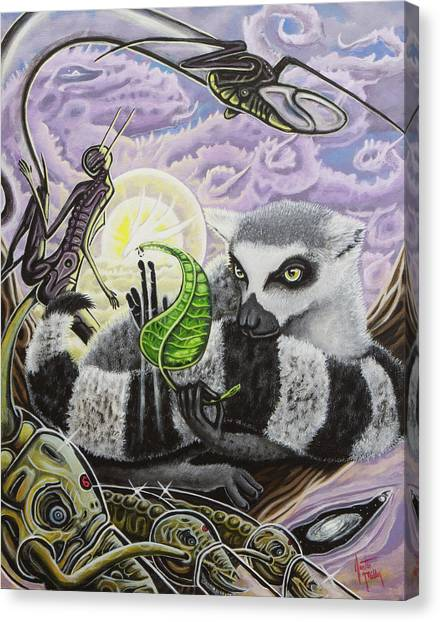 Ring-tailed Lemur Canvas Print - The Leaf Of Truth by Justin Miller