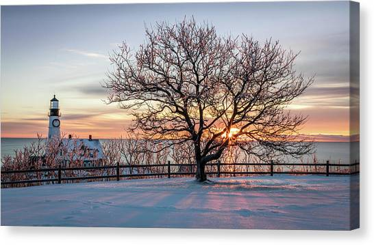 The Lighthouse And Tree Canvas Print