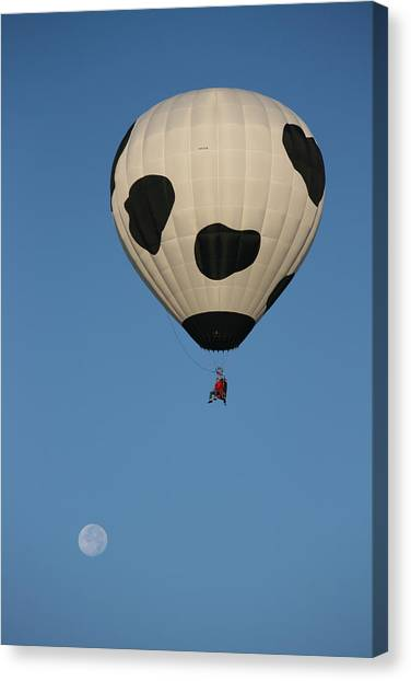 Hot Air Balloons Canvas Print - The Little Dog Laughed by Heather Classen