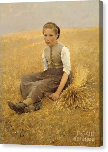 Bushels Canvas Print - The Little Gleaner, 1884 by Hugo Salmson
