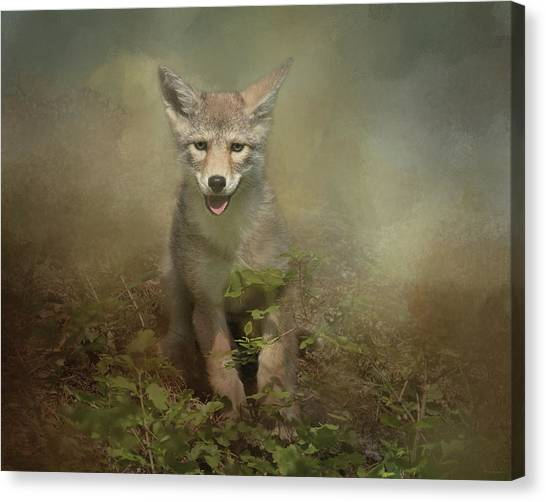 The Littlest Pack Member Canvas Print