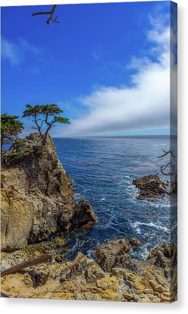 The Lone Cypress 17 Mile Drive Canvas Print