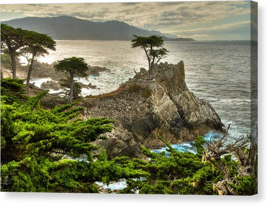 The Lone Cypress Carmel California Canvas Print