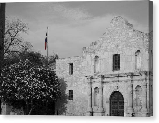 Canvas Print featuring the photograph The Lone Star by Dylan Punke